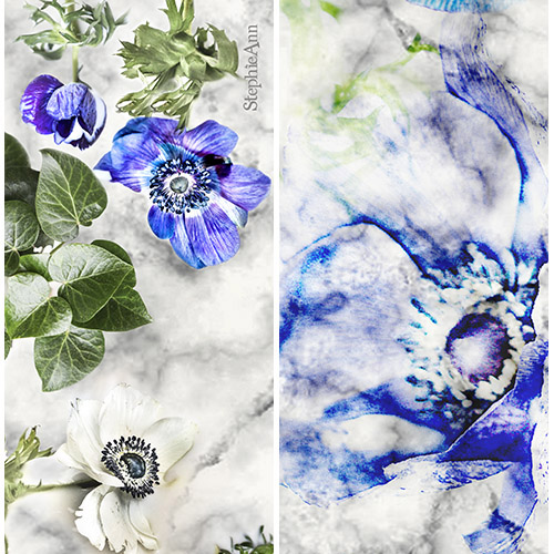 Anemone silk scarf by StephieAnn